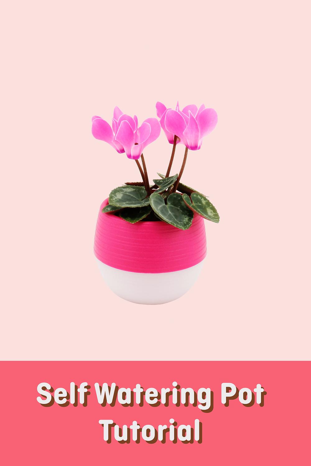 self watering pot tutorial