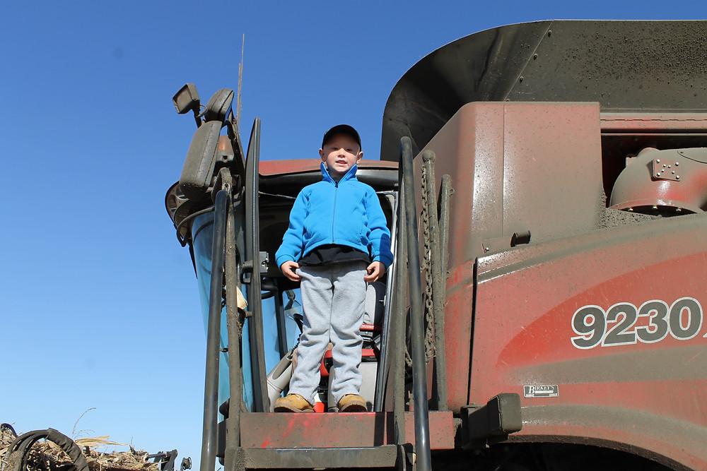 Beckett enjoying the combine ride