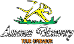 Logo Oficial.fw.png