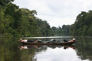 Amazon Discovery | The Golden Lake | 7 Days 6 Nights tour | Pacaya Samiria National Reserve | Tours to the jungle