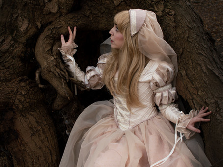 Renaissance Dress Photos