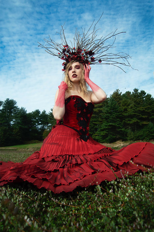 The Cranberry Witch