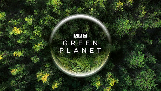 green planet.jpeg
