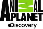 flat-animal planet.png