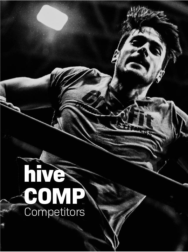 kurse_hive-08.png