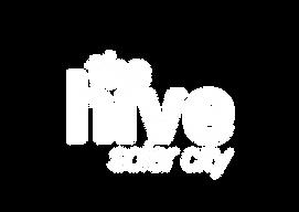 hive_logo_Zeichenfläche_1_Kopie-13.png