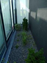 167BepflanzungeinesDachgartens.JPG