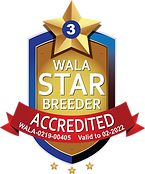 Bull Valley Accredited Logo 2022.png