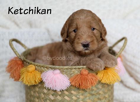 Ketchikan_Boy2.jpg