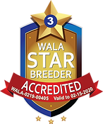 Bull ValleyWALA Star Logo.3.00405.png