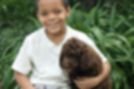 Kids and labradoodles
