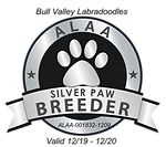 Bull Valley Silver Paw Logo 2020.png
