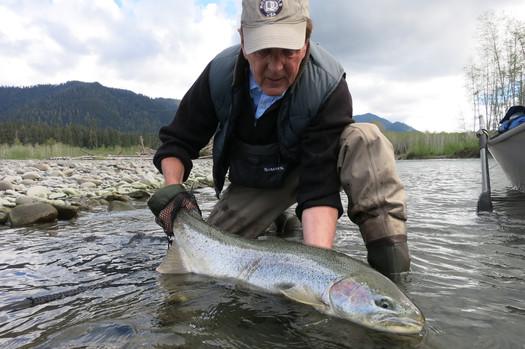 Big Fish 2016