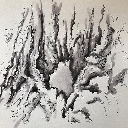 Olive Tree: Notebook Study