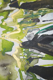 Forest River Detail