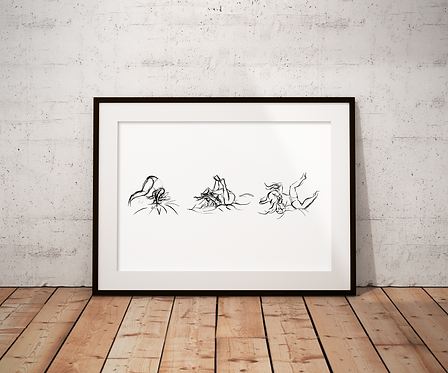 Roly Poly Sequence: New Limited Edition Print
