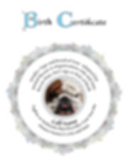 dog adoption certificate 2.jpeg