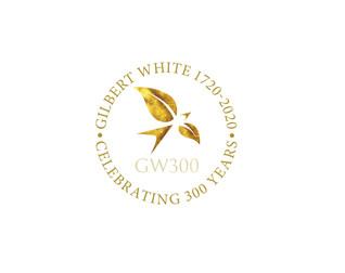 Logo design for museum