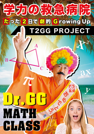Dr.GG T2GG Project