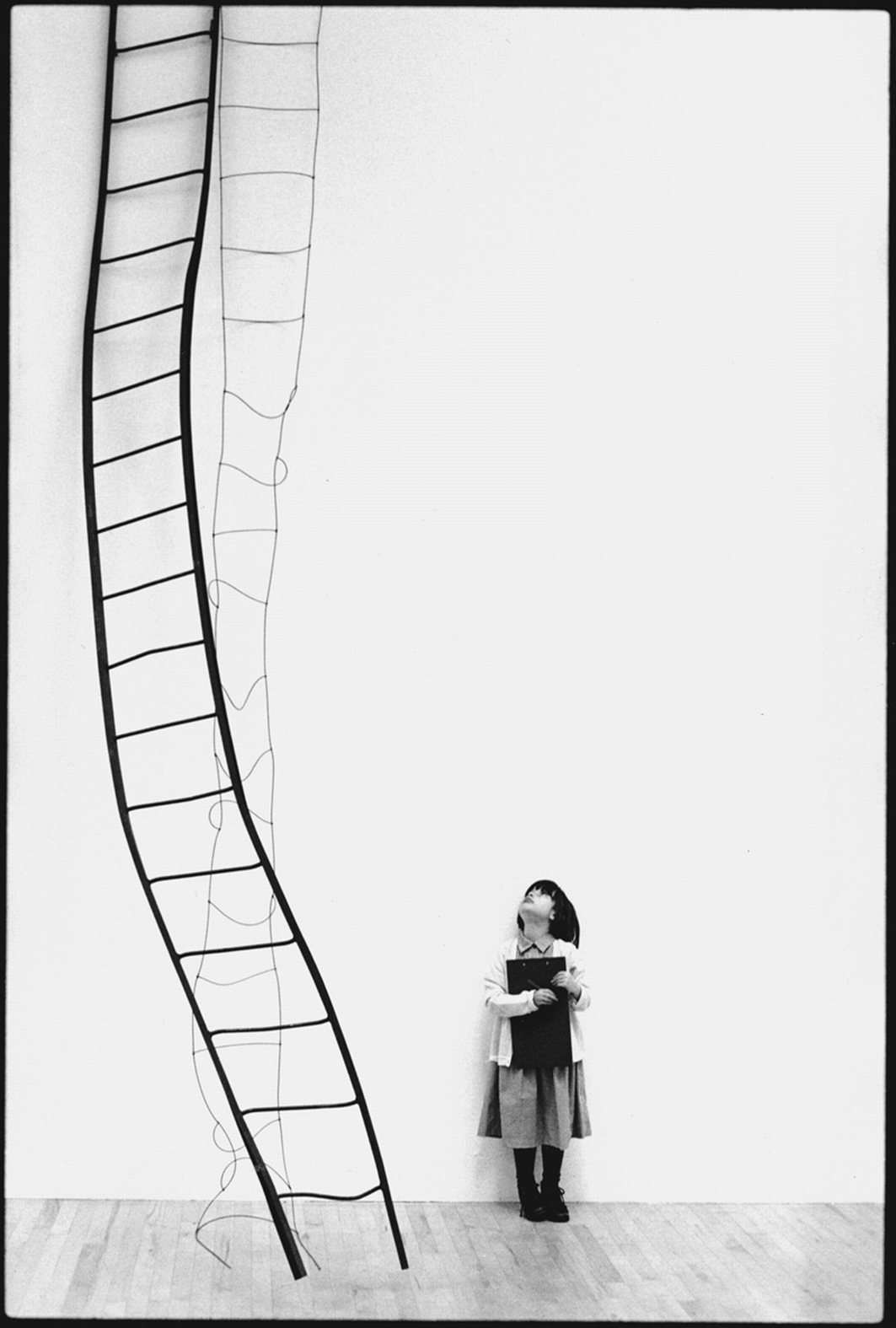 Siobhan and Ladder