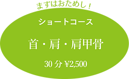 まずはおためし! ショートコース 首・肩・肩甲骨 30分¥2,500