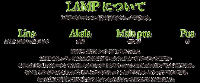 LAMPについて。LAMPは4つのハワイ語の頭文字をとった造語です。  Lino=光り輝く、眩しい、結びつける Akala=太陽 Mala pua=花園、庭 Pua=花  頭文字を繋げると<LAMP>になります。 LAMPの入っているビルの1階は美容室<ナチュラルヘアガーデンSCHOP> その名の通り1階はガーデン(お庭)。その2階に位置するサロンは、太陽の光が降り注ぎ、お庭を照らす。 そして、そのお庭に咲く美しい花。暖かく穏やかにゆっくりと時間が流れ、リラックスできる空間。 そんな空間で素敵なご縁を結び付けたい。そんな想いからLAMPはうまれました。