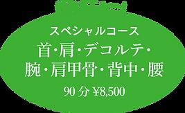 極みメニュー! スペシャルコース 首・肩・デコルテ・腕・肩甲骨・背中・腰 90分¥8,500