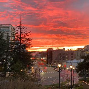 Fall in Berkeley