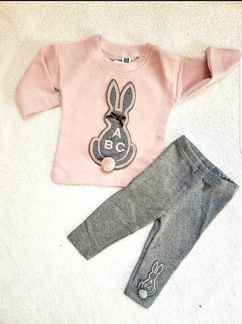 Pink Bunny ABC set