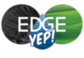 Edge_Yep_Logo_flat2_white.png