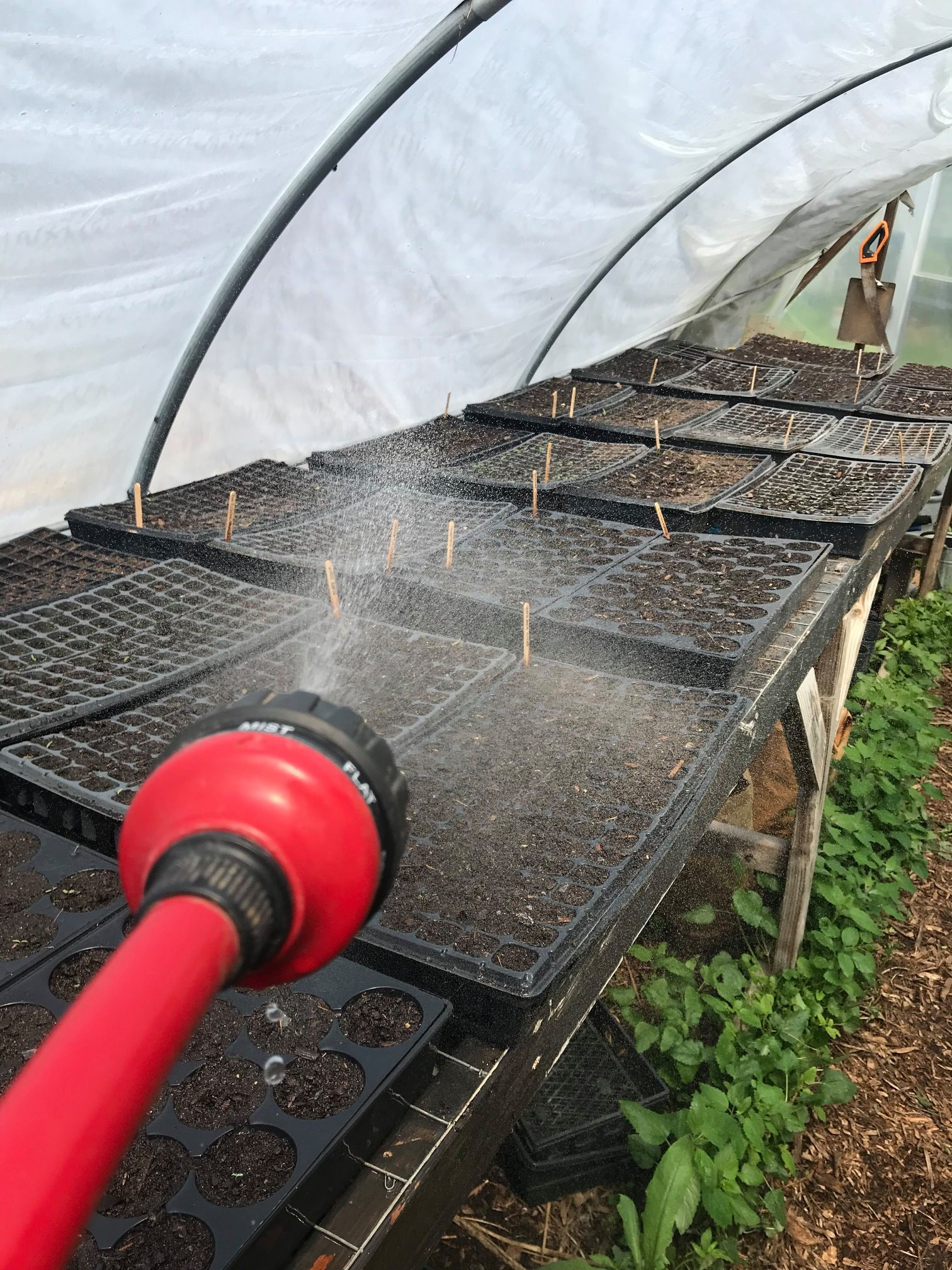 Hoop House Watering