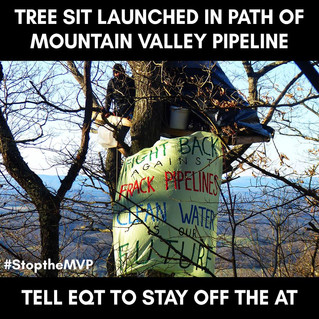 Tree Sit Launched In Path of Mountain Valley Pipeline