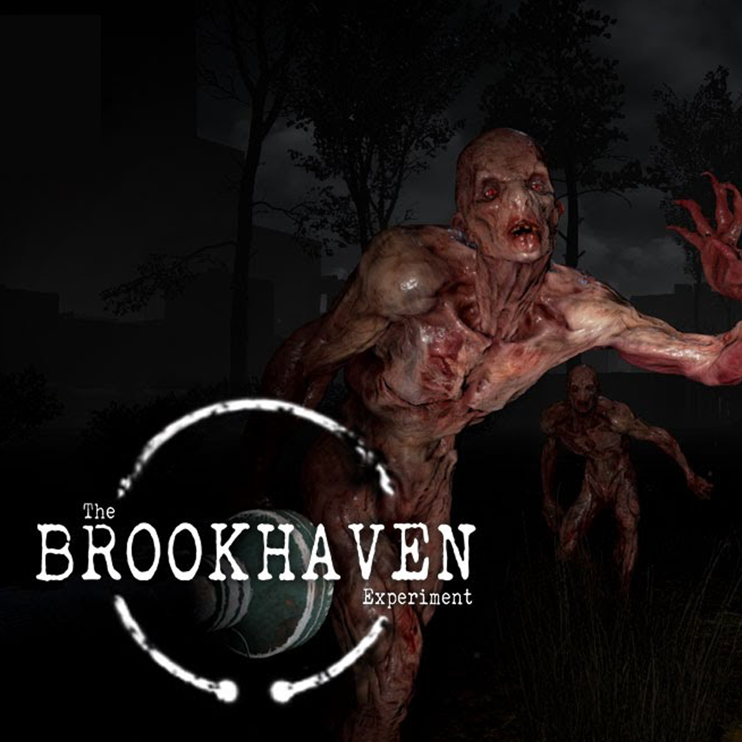Brookhaven Experiment