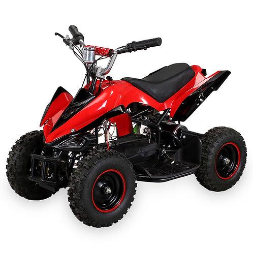 Mini Quad 800w 36v