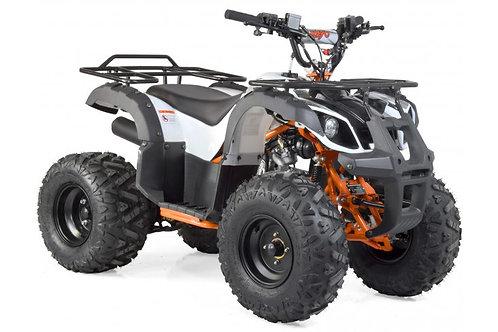 Maxi Quad 125cc 4T