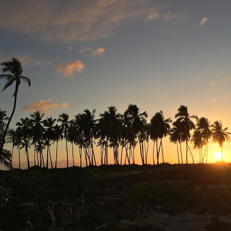 Kona Hawaii, Nourish Wellness