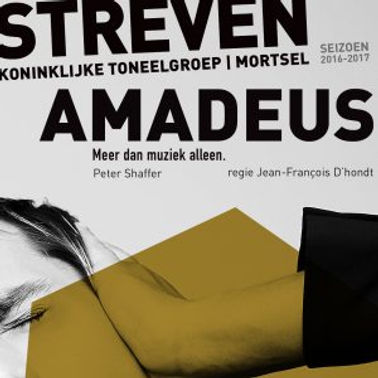 STREVEN-2016-2017-AMADEUS-105x105mm-300d