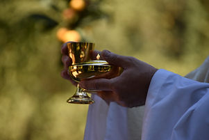 eucaristia pan y vino