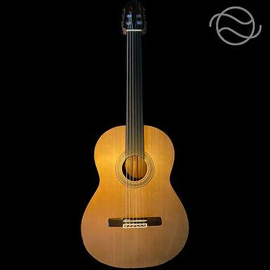 Ekrem Özkarpat - Fretless Guitar