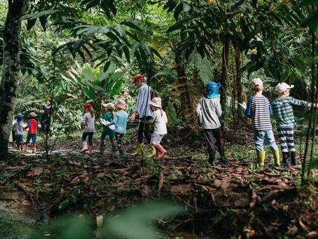 Let's Monkey Around!  The GIS Jungle School Programme