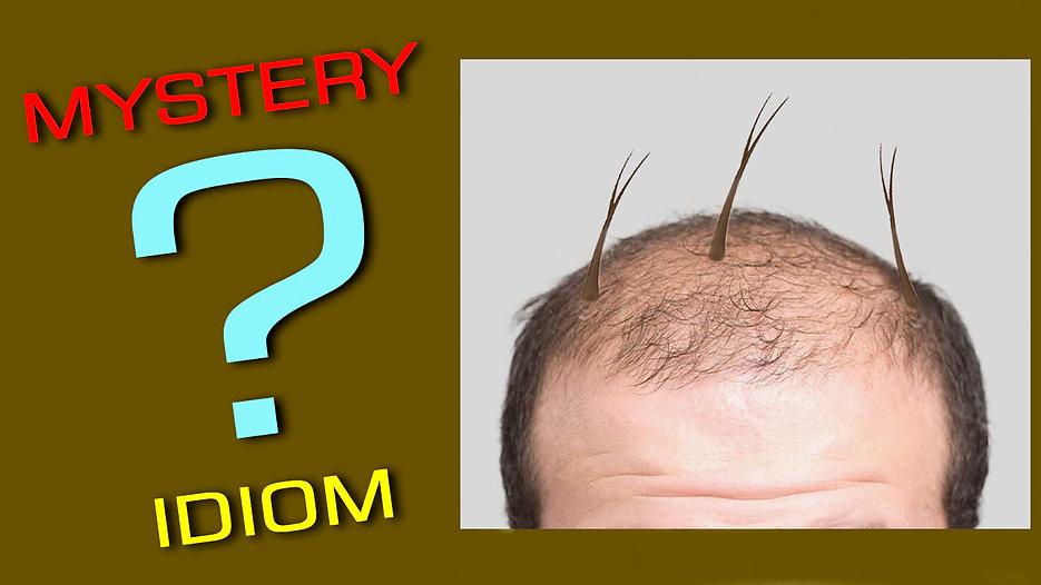 splitting hairs question.jpg