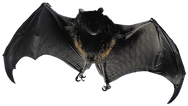 IMGBIN_bat-flight-animal-bird-mammal-png