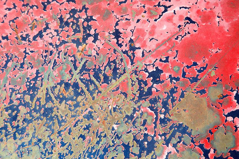 Rust In Bloom No. 4
