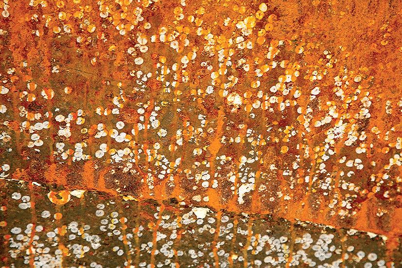Rust In Bloom No. 2