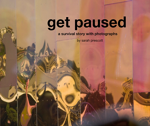 Get Paused Book