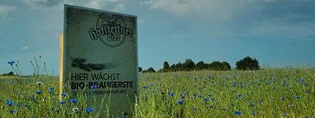 Mühlviertel, Gerste, Hofstettner, Bier, Brauerei Hofstetten, Mühlviertler Bier,