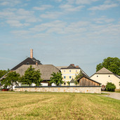 Brauerei Ost 2019.jpg
