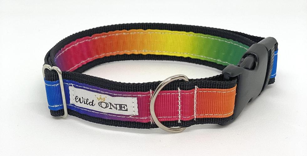 犬•首輪 Rainbow