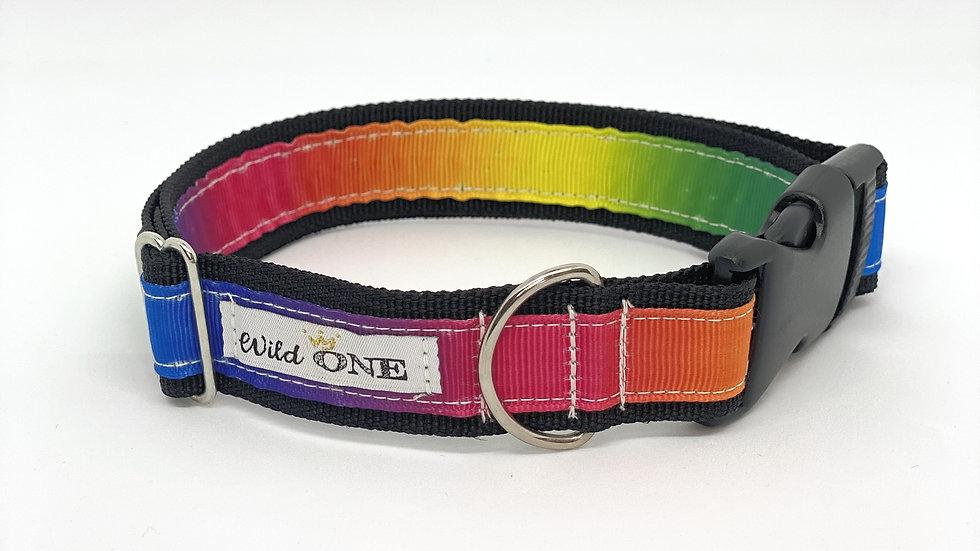 犬•首輪 Rainbow 2.5㎝(幅)