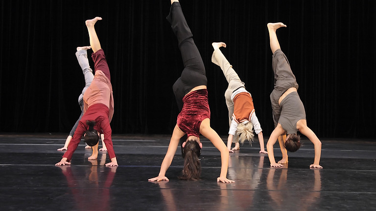 Adults Contemporary Dance Introduction (Waiting List)